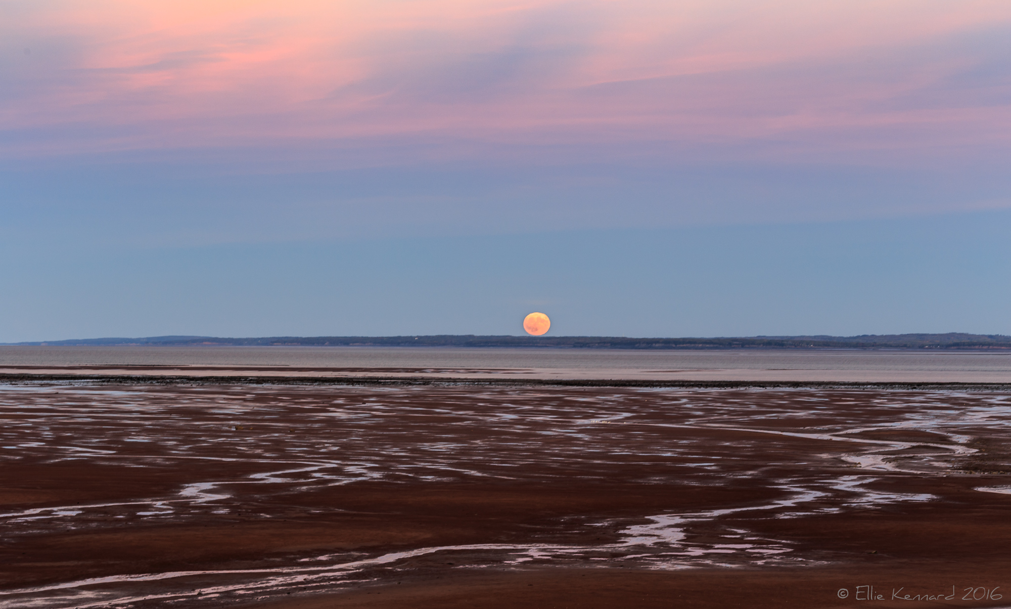 Hunters moon, Supermoon over the Minas Basin- Ellie Kennard 2016