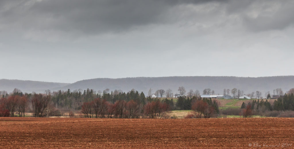 Spring Rain and Mist Over the Valley- Ellie Kennard 2014