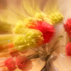 Rotation Blur- Ellie Kennard 2015