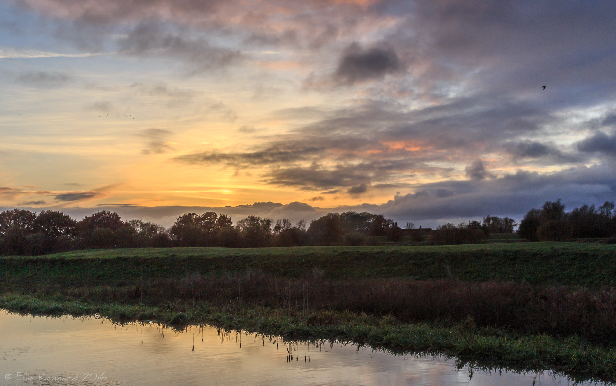 Walk along the river Witham in Dogdyke - Ellie Kennard 2016