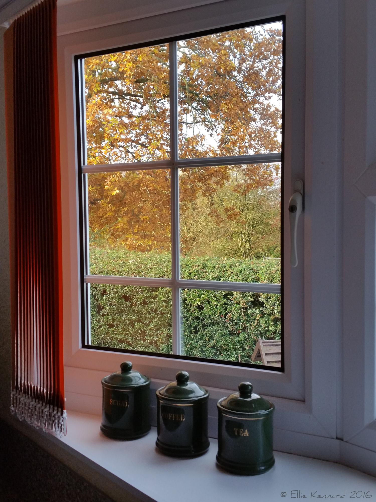 Cottage autumn window - Ellie Kennard 2016
