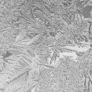 Icy 2013 Window - the last year - Ellie Kennard 2013