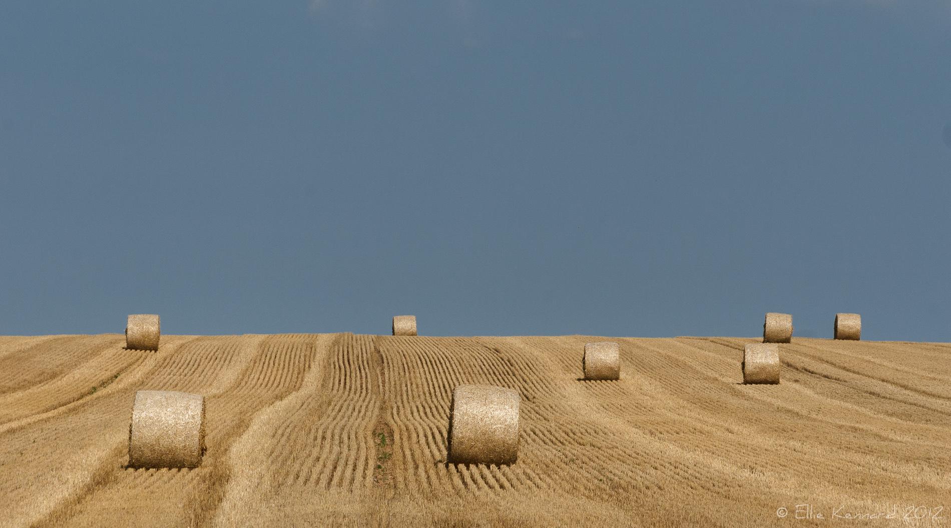 Round Bales on the Horizon - Ellie Kennard 2012