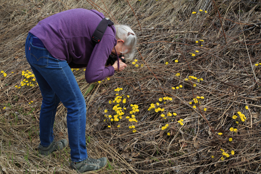 Ellie photographing flowers